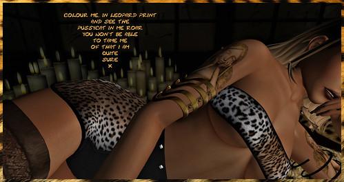 Colour Me: In Leopard Print