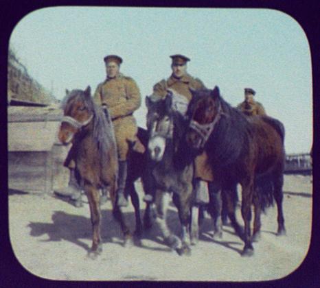 Хабаровск. Три казака на лошадях