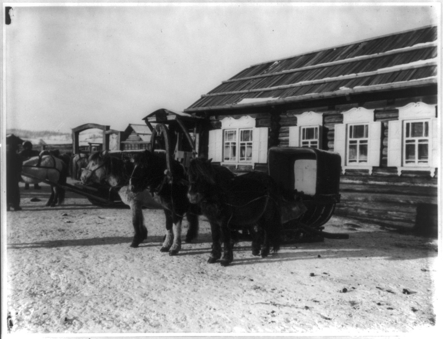 Хабаровск. Тройка лошадей с санями возле почтовой станции