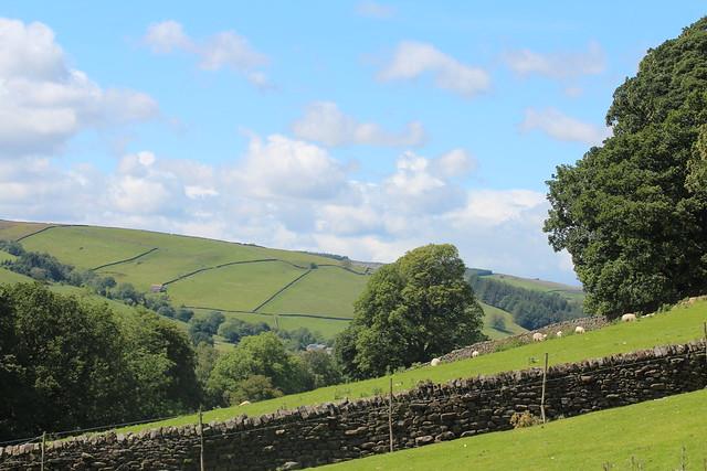 Nidderdale Landscape
