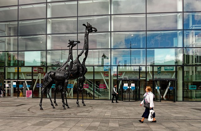 Edinburgh / Tow Giraffes / Omni Centre / Leith Street / Leith Walk