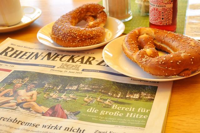Wetter am 25. und 26. Juni 2019: Bereit für die große Hitze ... Die Sahara lässt grüßen (Rhein-Neckar-Zeitung) ... Fotos: BS & HE