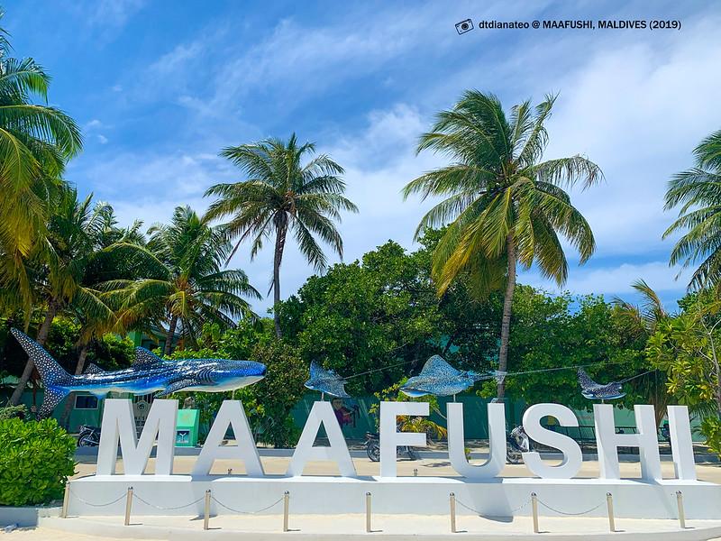 2019 Maldives Maafushi Island 01