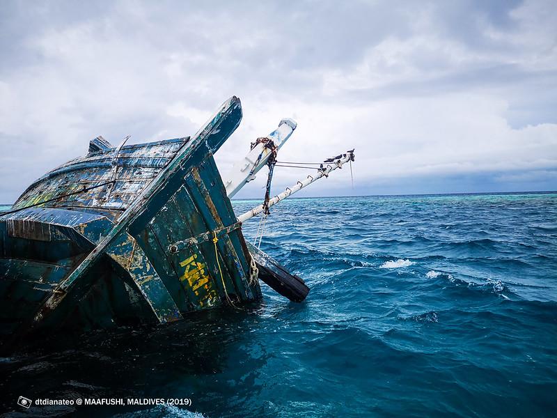2019 Maldives Snorkelling With ShipWreck
