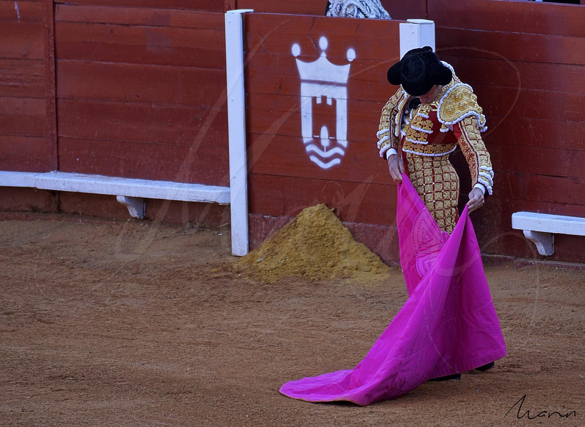 Toros Algeciras 2019 - 4