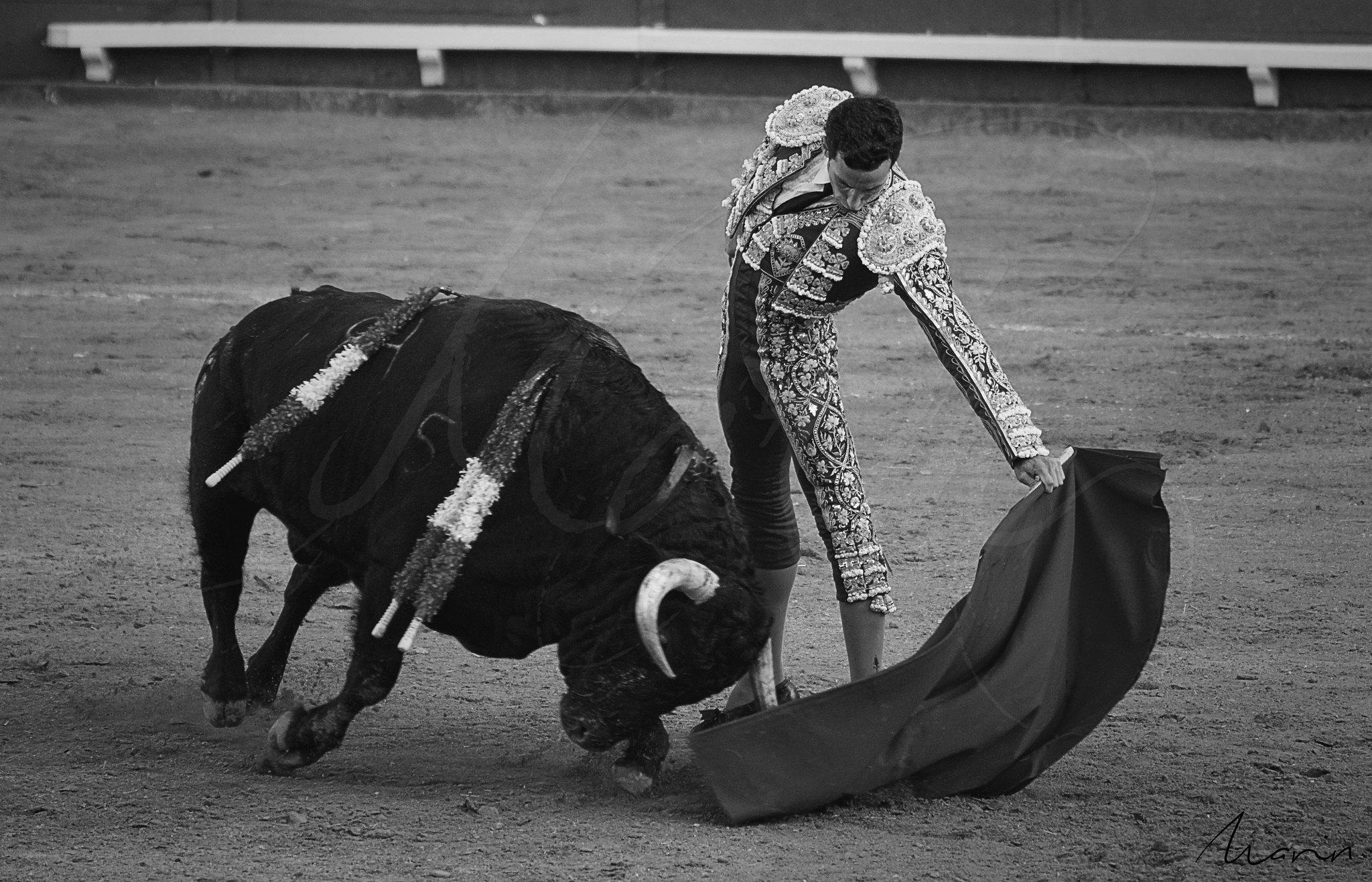Toros Algeciras 2019 - 14