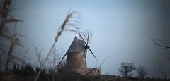 Villeneuve-Minervois (Aude, Fr)