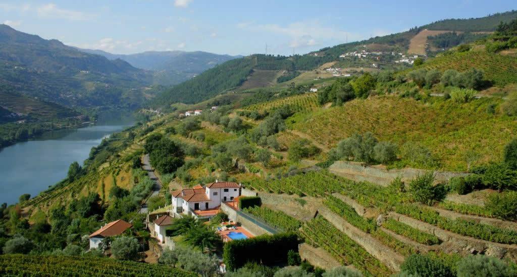 Douro Vallei: dagtrip naar de Douro Vallei | Mooistestedentrips.nl