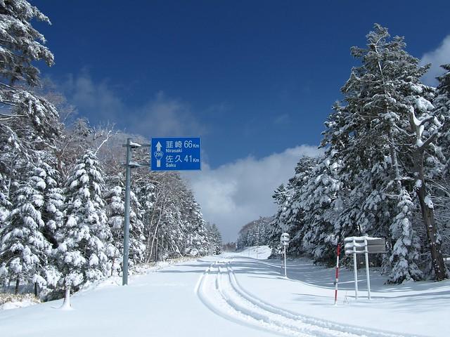 190301-02_北八ヶ岳 (25)