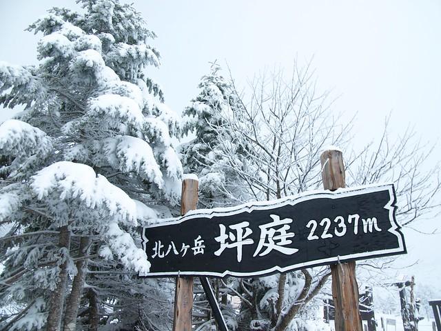 190301-02_北八ヶ岳 (3)