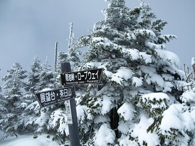 190301-02_北八ヶ岳 (13)