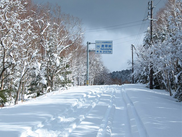 190301-02_北八ヶ岳 (30)