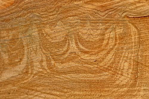 Le bois est Roi - The wood is King
