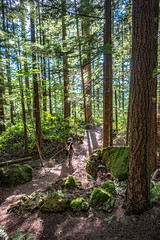 Cougar-Squak - Margaret's Way Trail