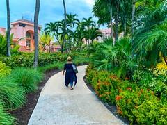 Strolling in Paradise...#bahamas #simsshot