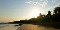 Tamarindo de Costa Rica