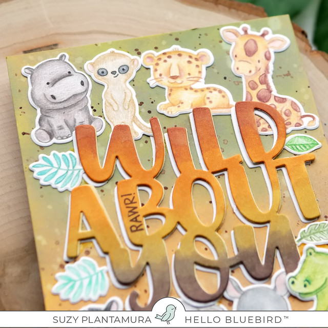 wild about you cu2