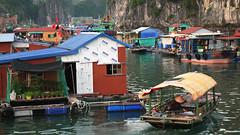 Floating Fishing Village at Ha Long Bay