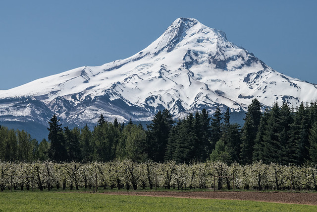 Mount Hood - Explored!