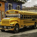 Your old school bus could be spending its retirement years in Guatemala