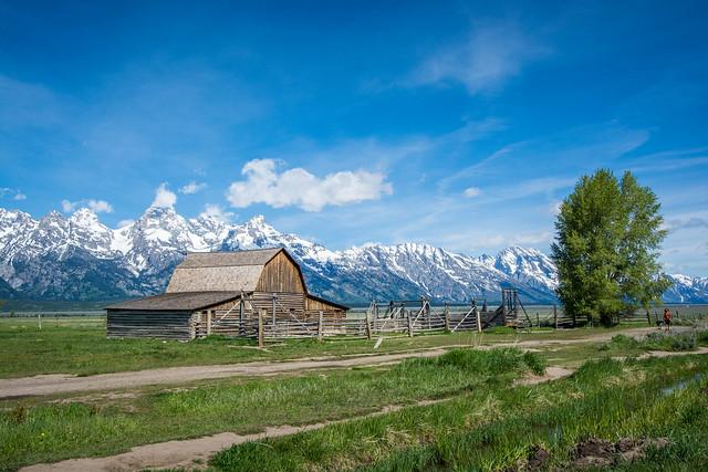 Mormon Row, Grand Teton NP