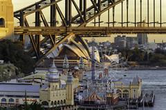 Golden Hour on Sydney Harbour, shot from Lavender Bay