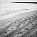 Blue35Photography posted a photo:Canon EOS 1V; Canon 50mm 1.2; Ilford Delta 400 pushed x 1
