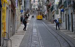 Funicular, Pessoas, Street, Lisboa