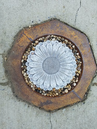 Daisy Stepping Stone in a Drain Cover