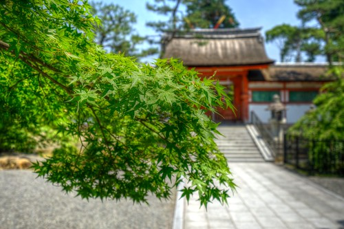 06-06-2019 Yoshida-jinjya Shrine, Kyoto (5)