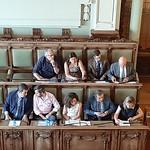 Pleno Extraordinario de Organización (25-6-2019)