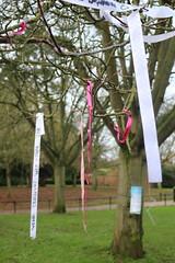 Rainbow Ribbon Tree