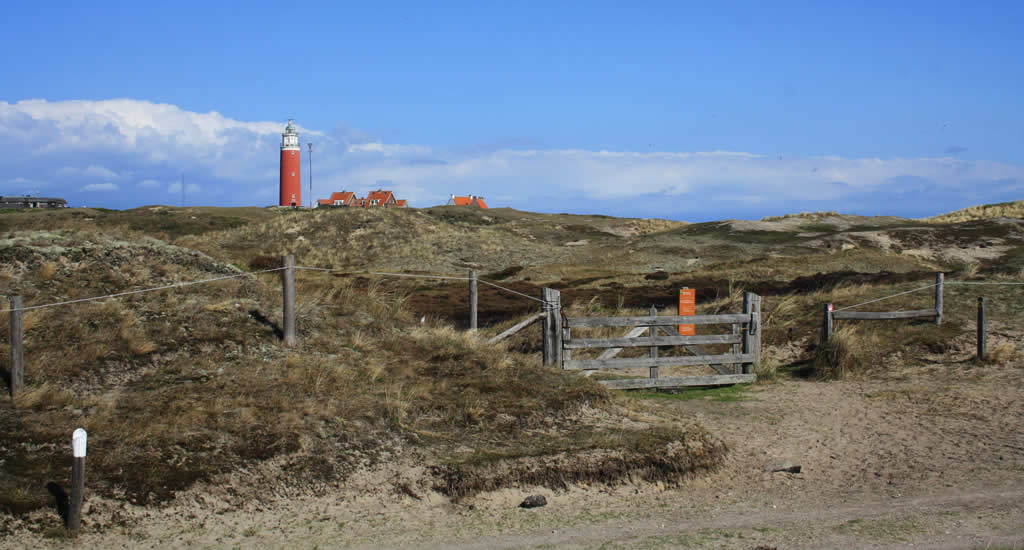 Lighthouse Texel, De Cocksdorp | Your Dutch Guide