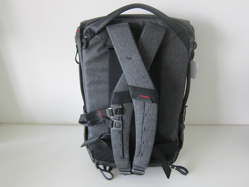 Peak Design Everyday Backpack 20L - Back