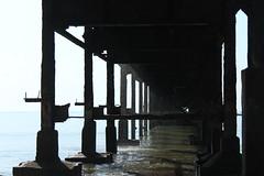 Antiguo Puerto