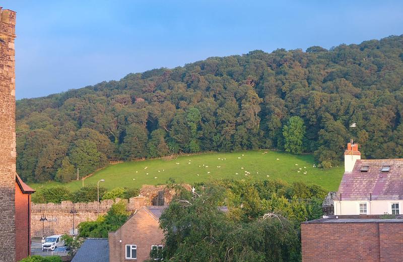 Wales-85.jpg