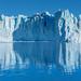 South View of Perito Moreno Glacier (Reflection) - El Calafate - Santa Cruz - Argentina - 02732