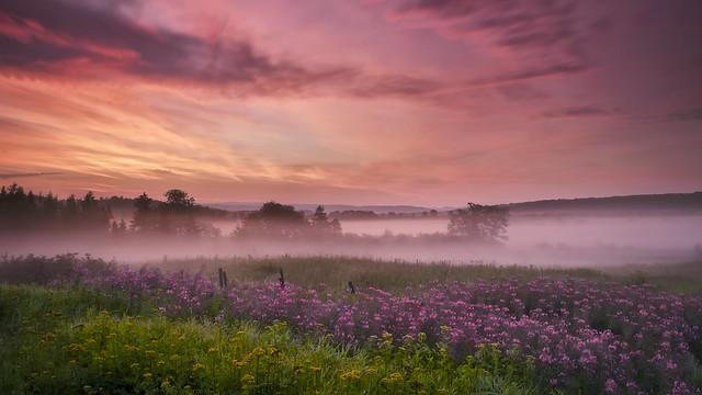 Lever du jour sous la brume