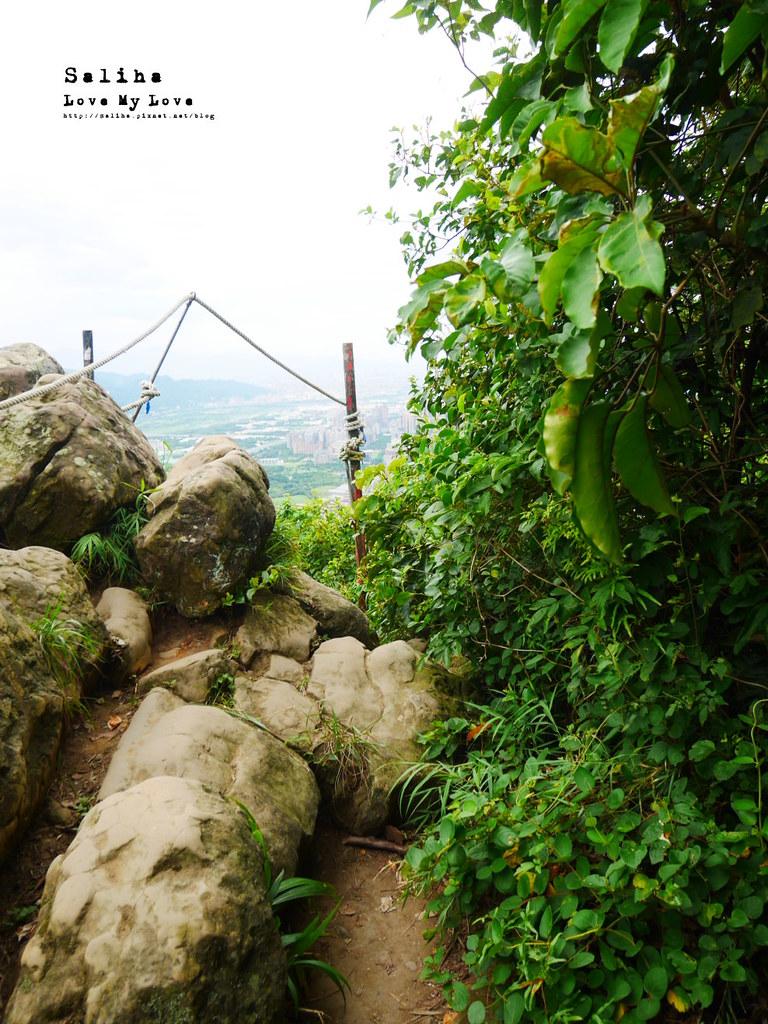 三峽老街附近必玩好拍絕美景點鴛山 好走踏青登山cp值高觀景台 (6)