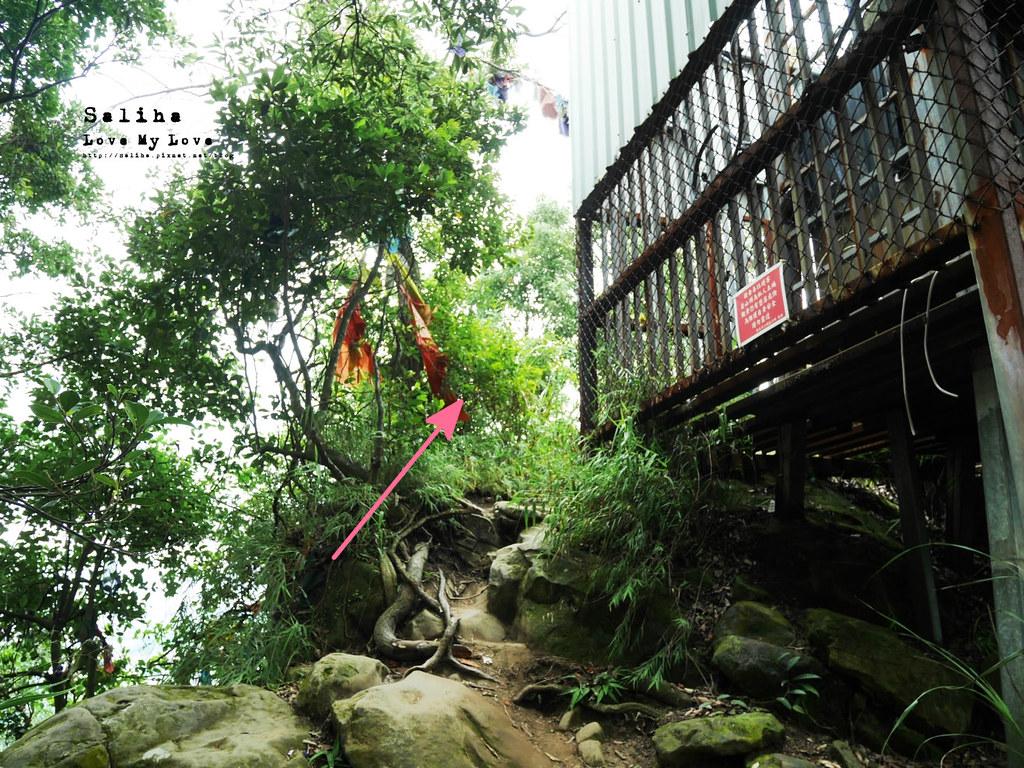 三峽一日遊景點推薦好拍必拍必玩鴛山步道怎麼去花費時間 (10)