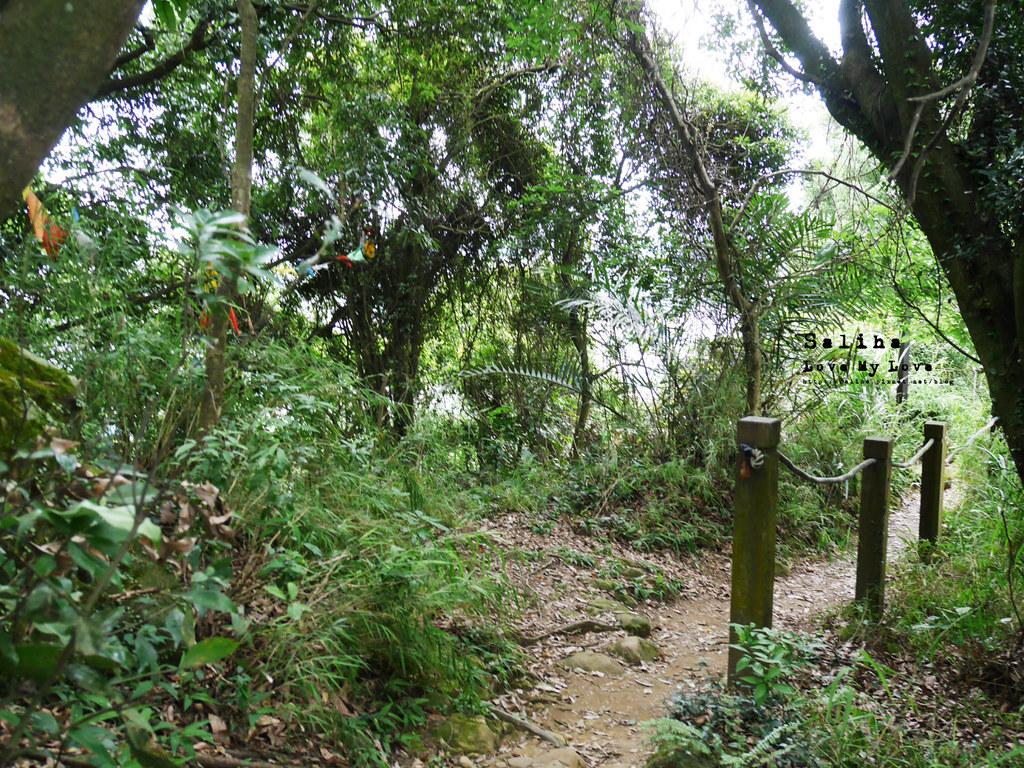 三峽一日遊景點推薦好拍必拍必玩鴛山步道怎麼去花費時間 (7)