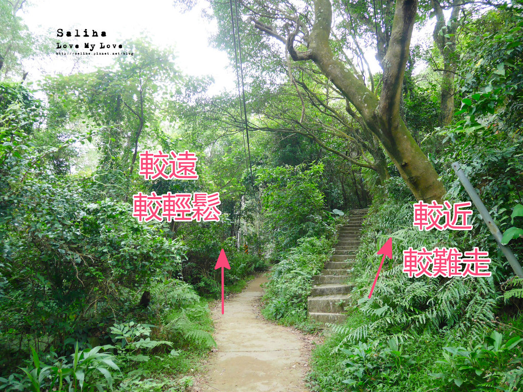 三峽一日遊景點推薦好拍必拍必玩鴛山步道怎麼去花費時間 (2)