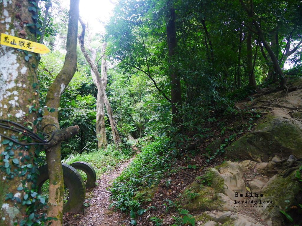 三峽藍染公園附近景點鴛山福德坑山爬山登山步道 (4)