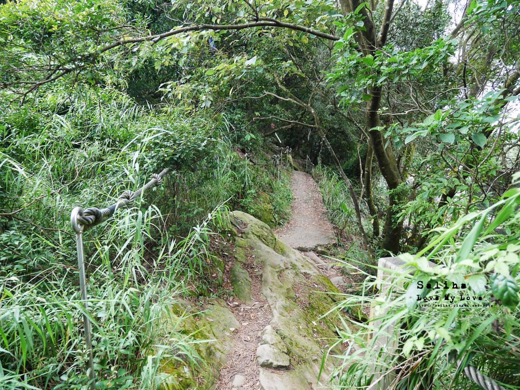 三峽一日遊景點推薦好拍必拍必玩鴛山步道怎麼去花費時間 (8)