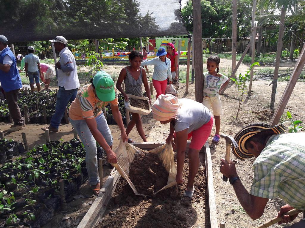 社區苗圃。圖片來源:UNDP Colombia (CC BY-ND 4.0)