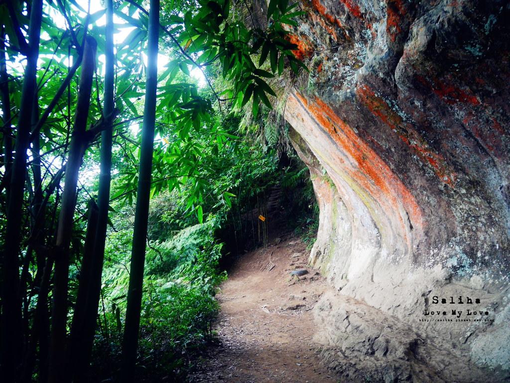 新北三峽隱藏版必玩秘境景點推薦彩壁岩 (1)
