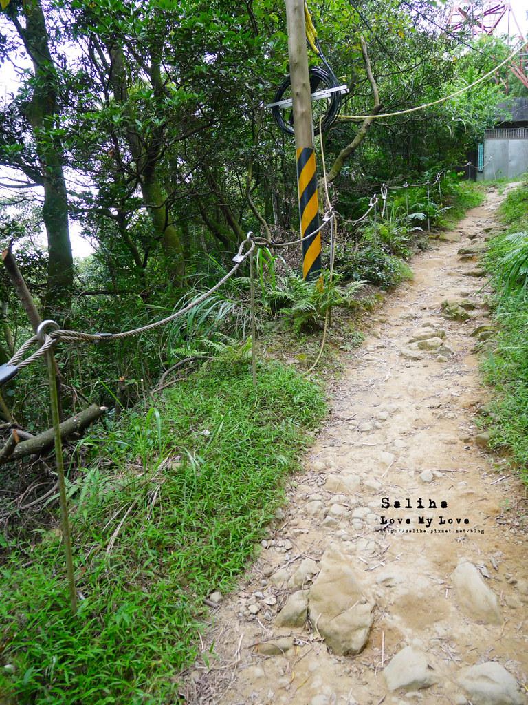 三峽一日遊景點推薦好拍必拍必玩鴛山步道怎麼去花費時間 (3)