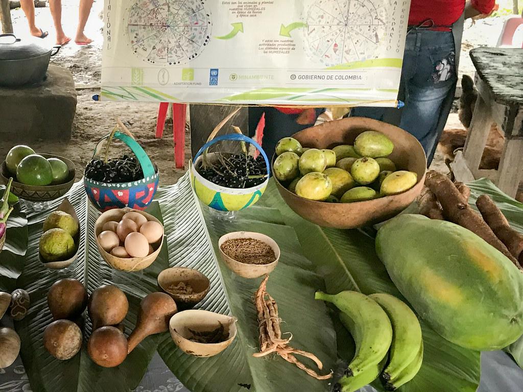 原生作物和種子。圖片來源:UNDP colombia (CC BY-ND 4.0)