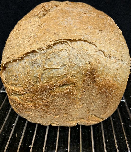 2019 Sydney: Wholemeal Home Made