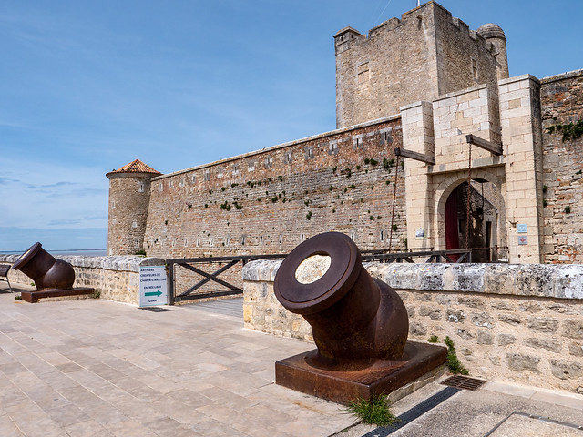Le fort Vauban, une forteresse inutile ? - Fouras (17)